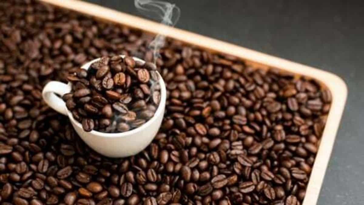 the picture is showing a small cup and coffee beans