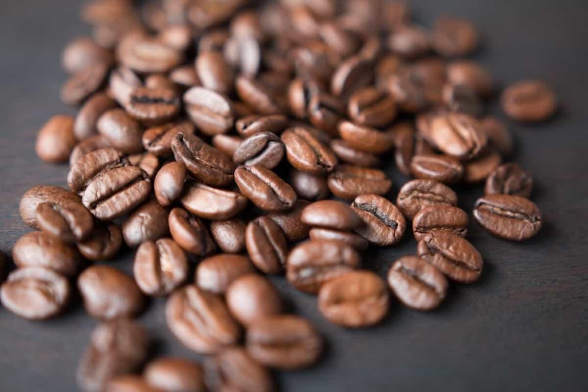 picture showing coffee bin single big source of caffeine