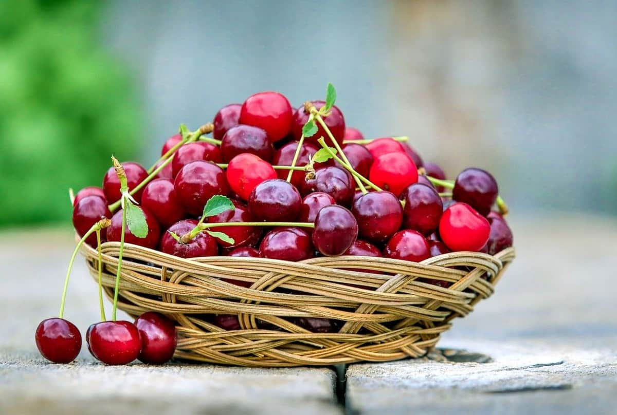 A basket that is full of red cherries.
