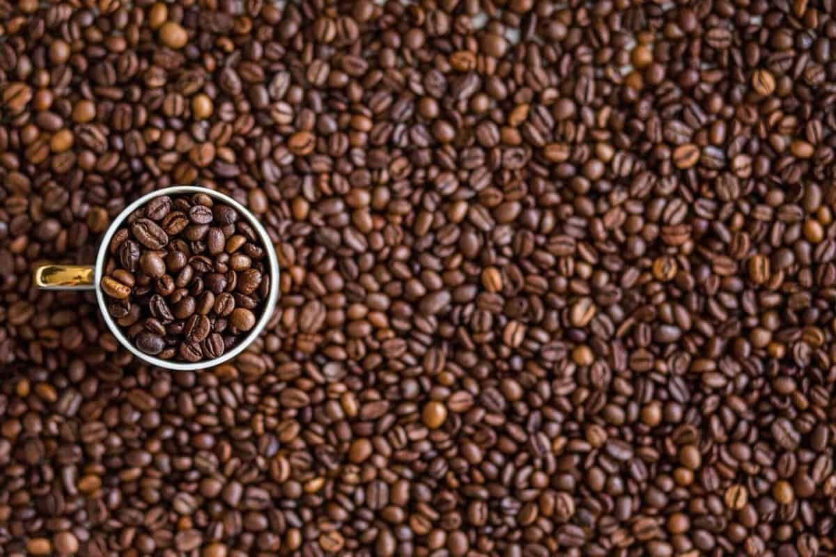 Coffee beans and a cup which is also full of coffee beans.