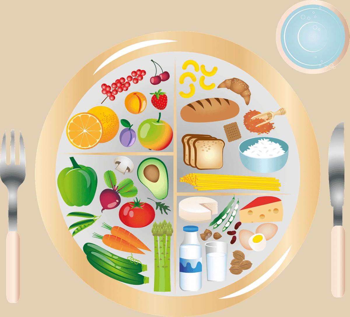 A plate showing a balanced diet chart.
