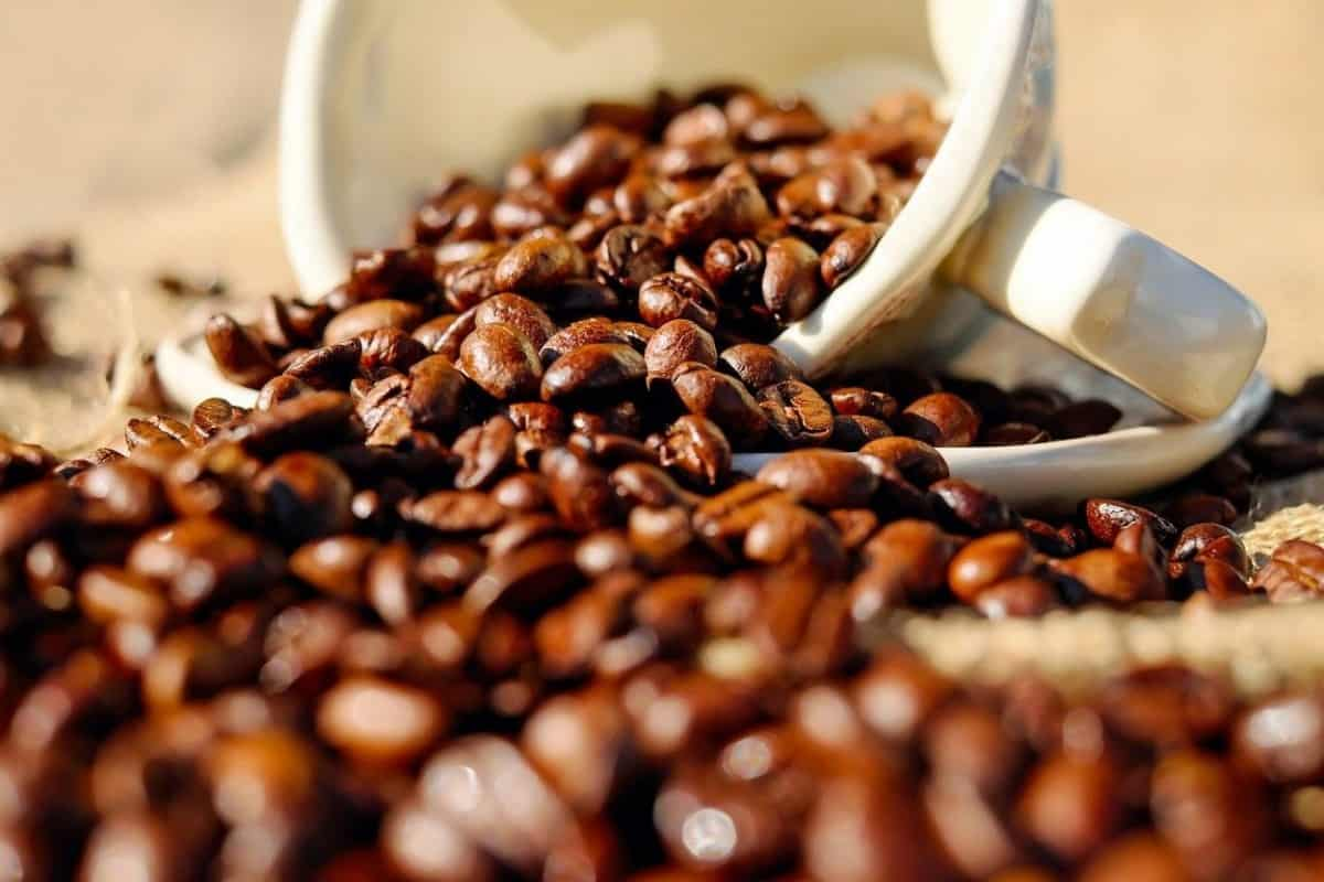 Coffee beans in a cup.