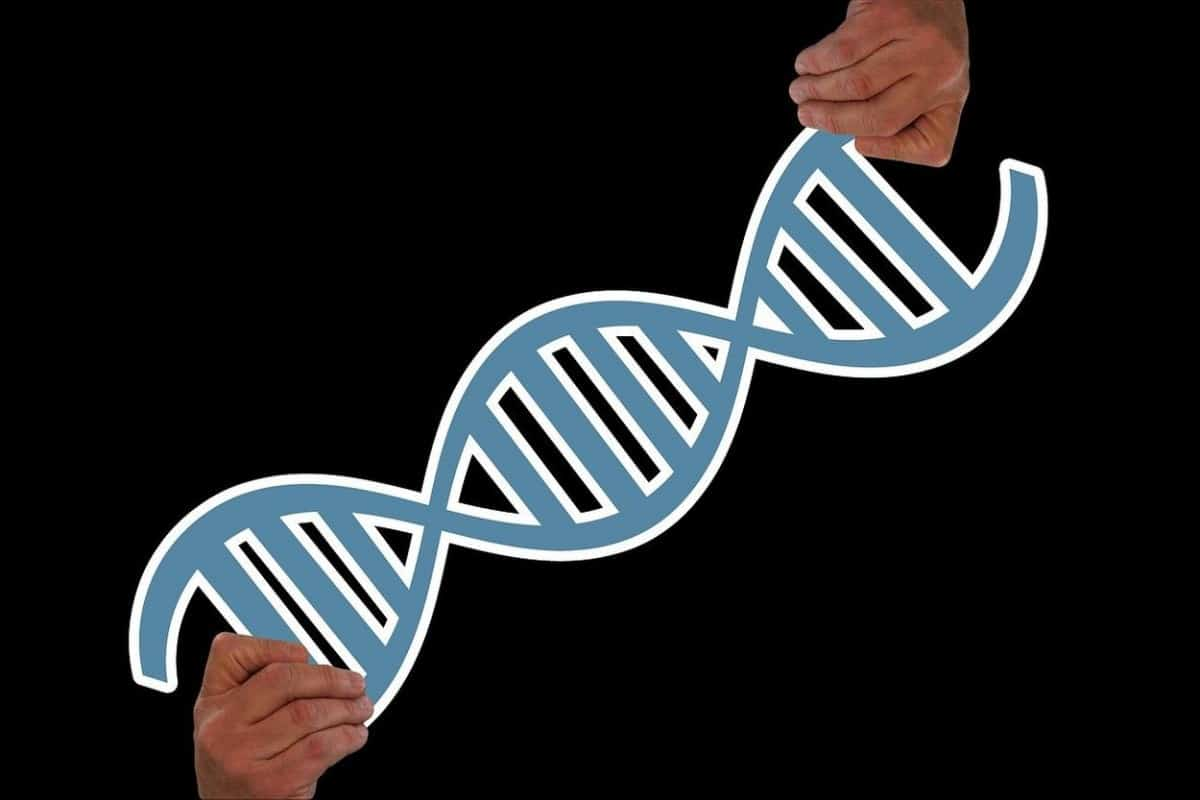 Both hands holding imaginary DNA.